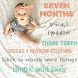 S E V E N  months